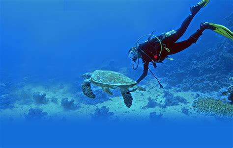 Kaos Diving Padi 2 10 unexpectedly awesome things to do in the smallest union territory of india by gunjan upreti