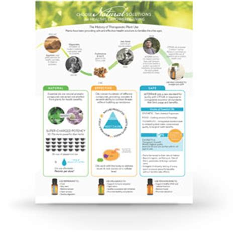 Doterra Class Outline by 187 Solutions Class And Free