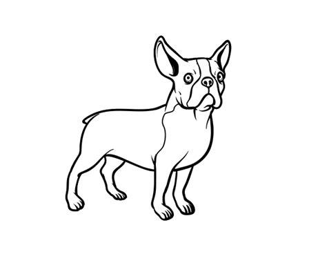 dibujos de perros para colorear dibujosnet dibujo de perro bulldog franc 233 s para colorear dibujos net