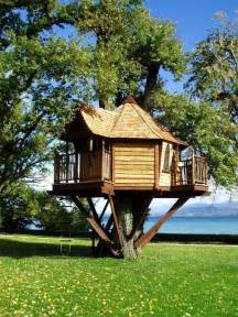 tree homes home styles tree houses style amp design