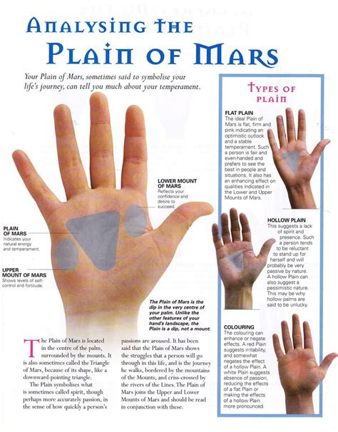 divination palmistry analyzing the mounts 164 best palmistry images on palm reading