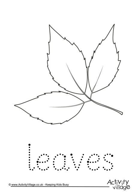 leaf pattern to trace leaves word tracing