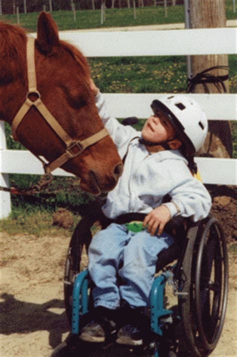 the clinical practice of equine assisted therapy including horses in human healthcare books hippotherapy business grant for not legally disabled