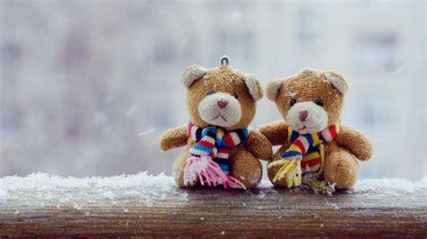 teddy couple wallpaper hd teddy bear couple beautiful looks hd wallpapers rocks