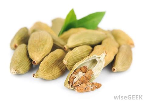 what is cardamom with pictures