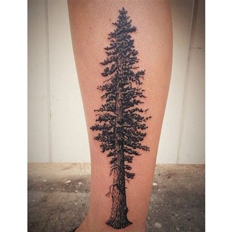 san diego tattoos designs redwood tree by circle