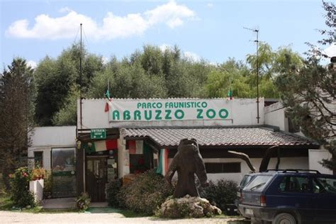 ingresso zoo roma ingresso zoo foto de bioparco faunistico zoo d abruzzo