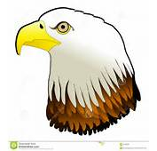 Eagle Eye Clipart Stock Illustrations Vectors &amp