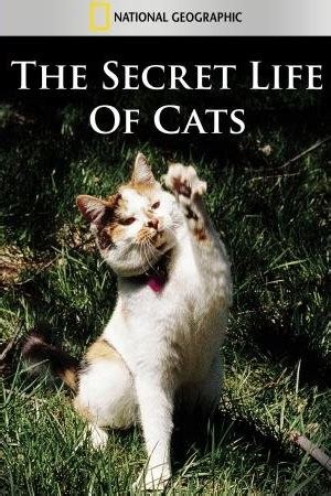 the secret inner of pets a leading psychologist and an animal communicator bring you the and wisdom of animals books the secret of cats documentary for free