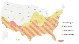 us map zika mosquito why and babies in the south are at risk from zika