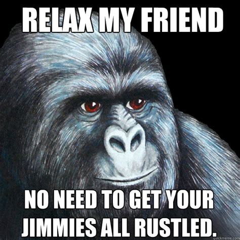 Relax Meme - relax my friend no need to get your jimmies all rustled