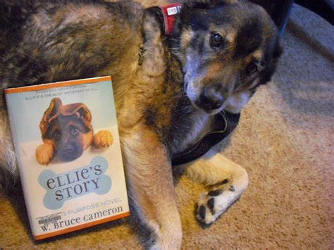 dogs name in story grab a book from our stack quot ellie s story quot by w bruce