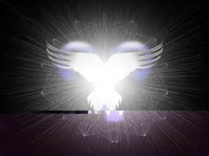 light wings of light gallery image 19 of 25
