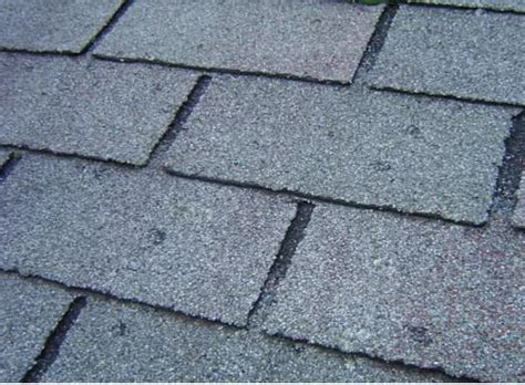 Heavy Rains Causes Flooding hail damage shingles ? Get