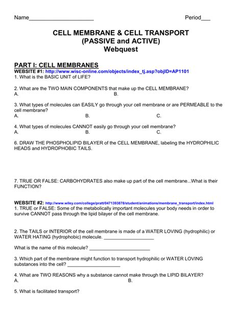 Cell Transport Webquest Worksheet Answers