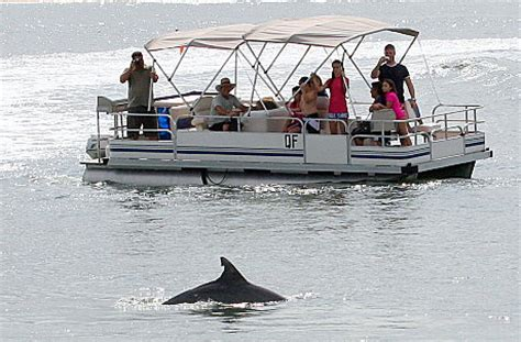 barbie boat bribie bbq pontoon boat hire 1 hour by extreme jetski hire