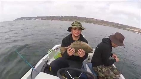 bass boat rental san diego san diego bay fishing mcrd boat rental spotted bay