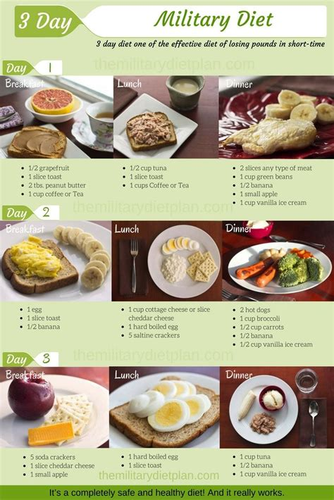 Weight Watchers Diet Review by 1000 Ideas About Diet Menu On 3 Day