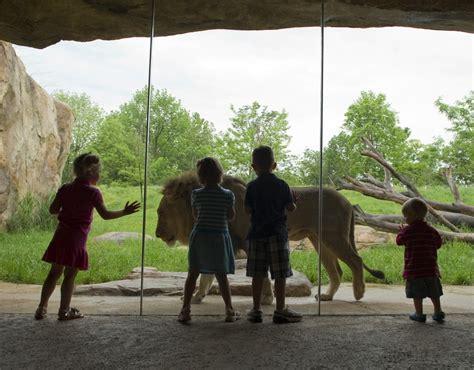 fort wayne childrens zoo press room