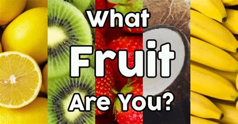 what fruit am i how fruit is developed books what fruit are you quizdoo