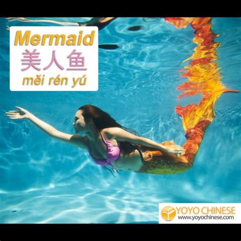 film mandarin mermaid 132 best images about learn chinese on pinterest reading