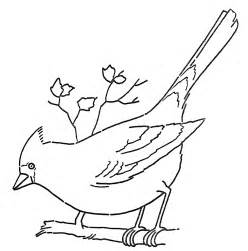 line coloring page cardinal on branch the