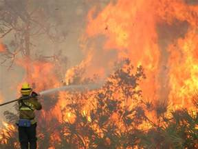 florida wildfires high season for wildfires in florida wlrn