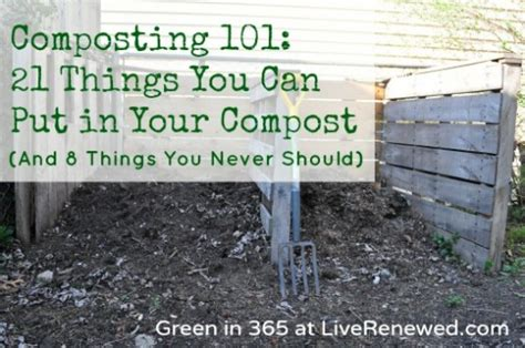 Ls You Can Put Things In by Composting 101 21 Things You Can Put In Your Compost