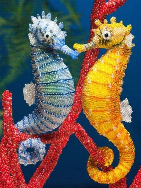 colorful seahorse colorful seahorse images search