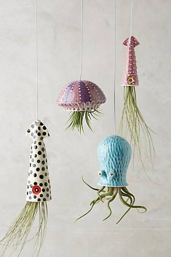 Anthropologie Jellyfish Rug by Hanging Planters Planters And Met On