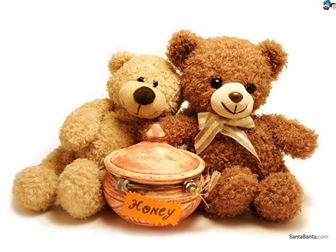 teddy bear on pinterest teddy bears bears and teddy