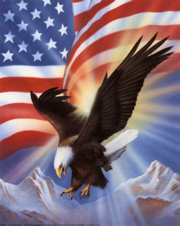 ani s american eagle i walk into the room in gold lookbook american eagle and flag ii jpg