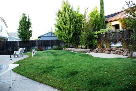 inexpensive backyard landscaping best house design small simple backyard ideas on a budget