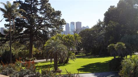 Melb Botanical Gardens Top Things Melbourne