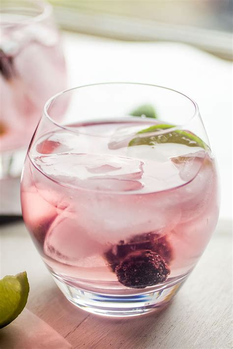vodka tonic recipe blackberry vodka tonics with infused vodka as a