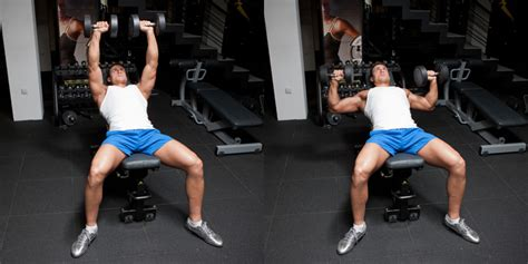 incline bench press dumbbells incline dumbbell bench press download foto gambar