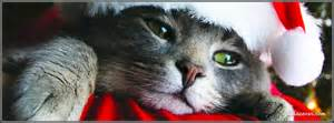 katzen decken santa cat covers santa cat fb covers santa cat