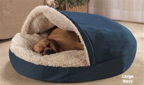 coolest bed ever 19 stylish and cozy dog beds ideas you and your dogs will