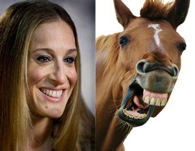 Sarah Jessica Parker Horse Meme - the origin of sarah jessica parker comparison to a horse