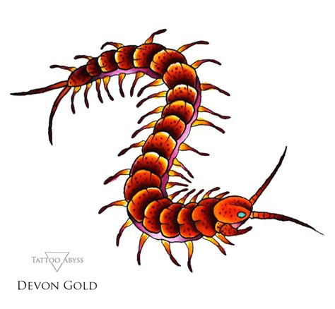 centipede tattoo centipede collections