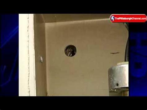 bathroom peep holes bathroom peep hole found in beaver courthouse youtube