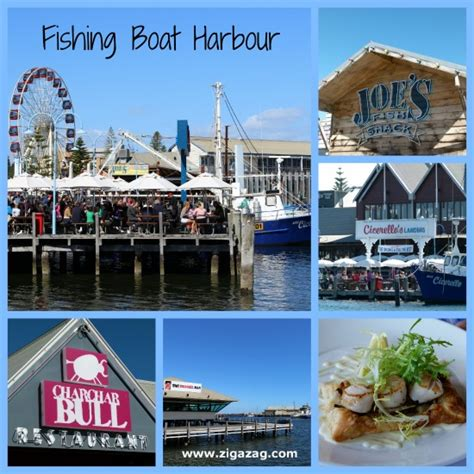 fremantle fishing boat harbour piazza fun things to do in fremantle lifestyle fifty