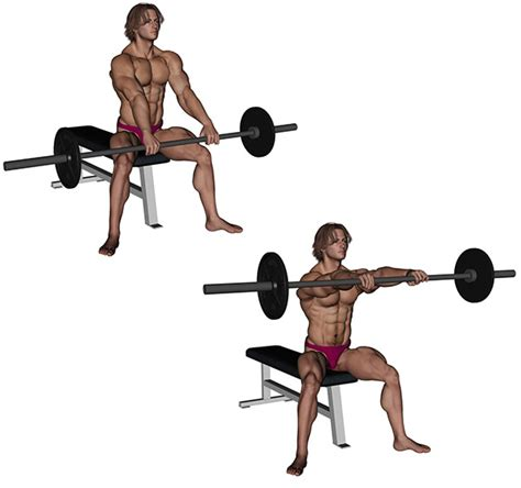 Exercice De Musculation Avec Banc by Musculation 201 Paules Ant 233 Pulsion Avec Barre Droite
