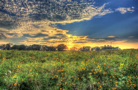 Prairie Gardens Chaign Il by Free Stock Photo Of Sunset On The Prairie At Chain O Lakes