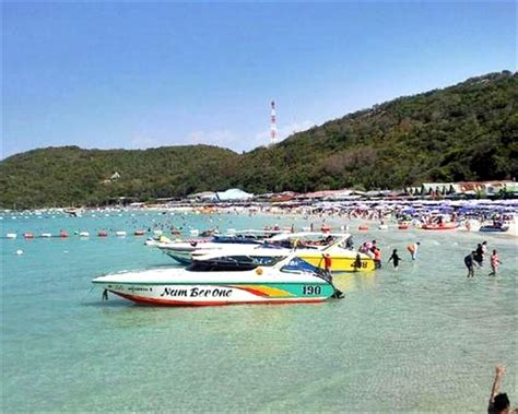 speed boat tours near me coral island by speed boat from pattaya thailand