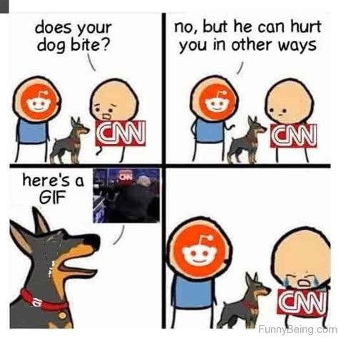 Dog Bite Meme - 25 donald trump vs cnn fake news memes