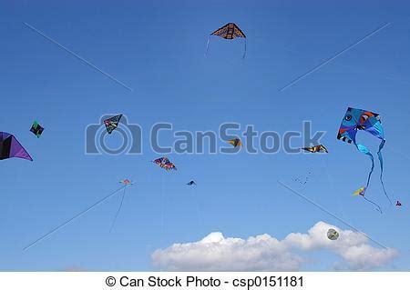 cervi volanti 6752 cervi volanti cervi volanti