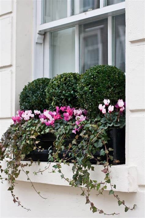 Indoor Window Planter Boxes - window boxes london design installation maintenance london planters