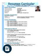 Ejemplo Modelo Curricular De Formato Modelo Ejemplo De Resumen Curricular Para Rellenarlo
