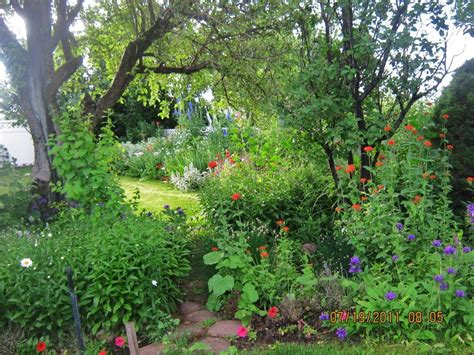 shade gardens zone 4 17 best images about zone 4 perennial on